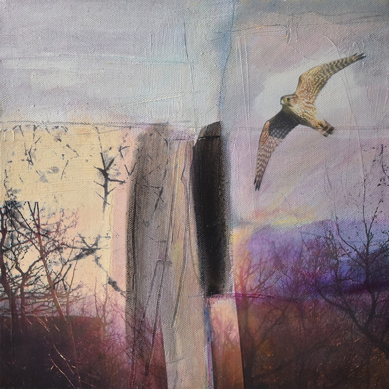Kate Boyce A Wing And A Prayer