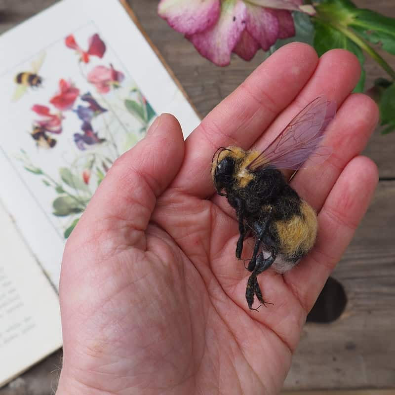 Lucy Pendrick Bee in hand
