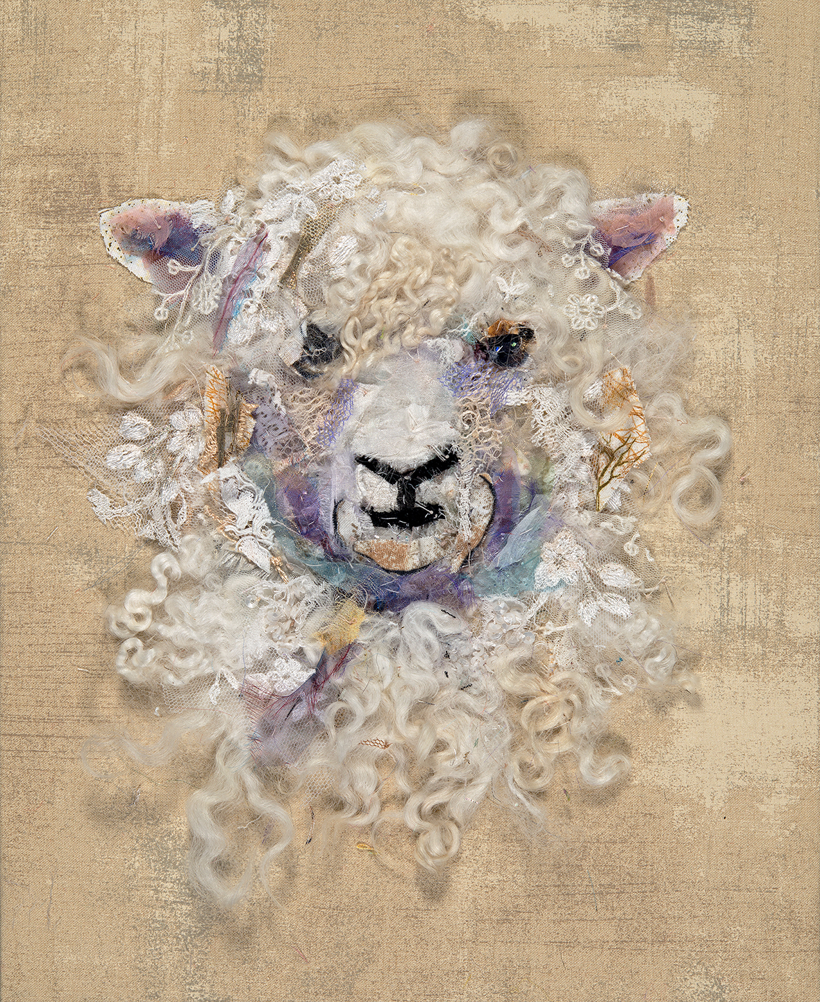 Barbara Shaw Cotswold Sheep