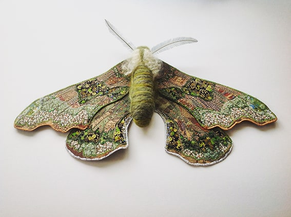 Heather Everitt green hawk moth