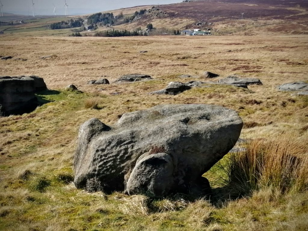 Toad Stone discovered whilst out walking