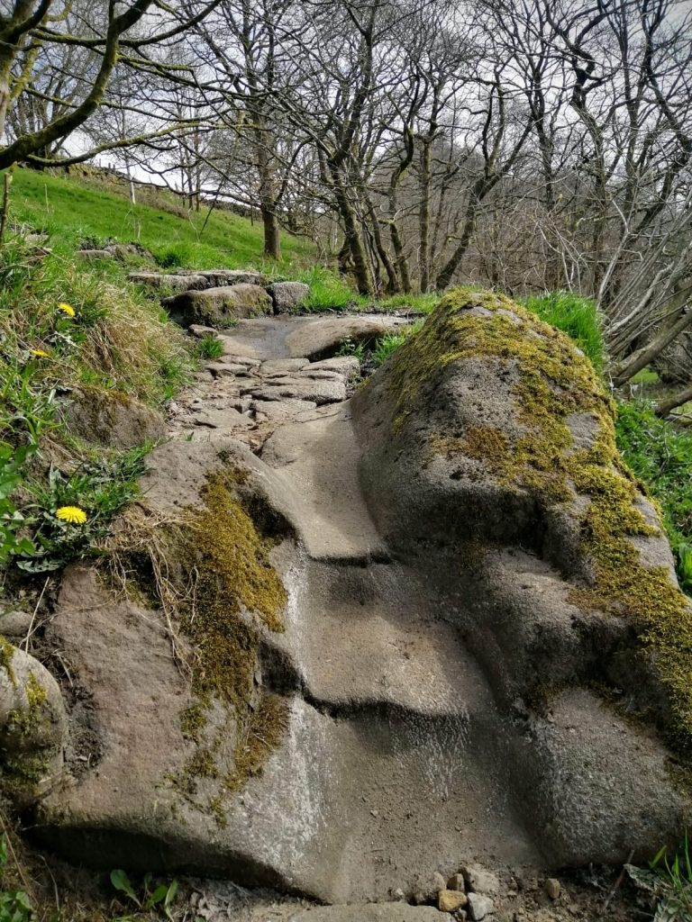 stone path worn smooth by ancient footsteps
